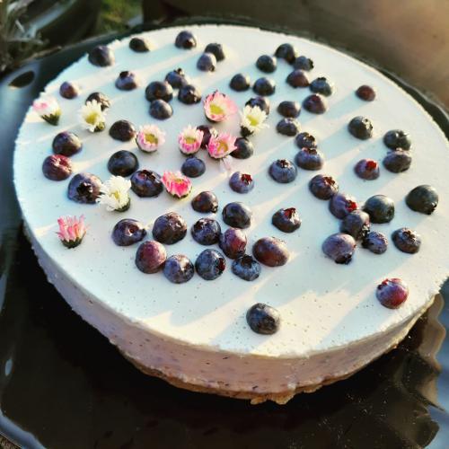 RAW dort bílá èokoláda s borùvkami